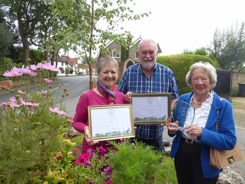 Bray Enhancement Committee members with the 2016 RHS awards